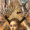 """Among the Thorns"" by Veronica Schanoes"